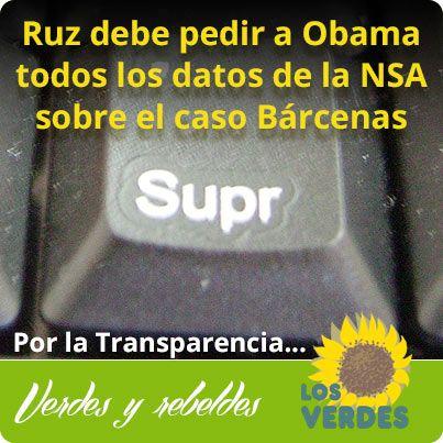 Los Verdes consideran que Ruz debe pedir a Obama todos los datos sobre el caso Bárcenas