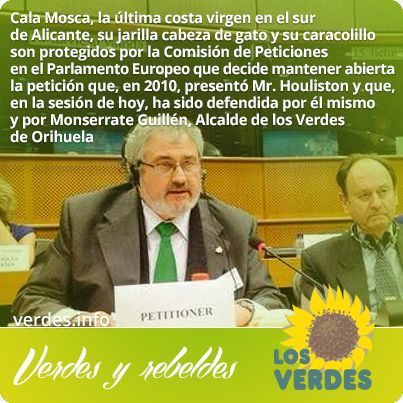 Los Verdes defienden Cala Mosca ante la Comisión de Peticiones en el Parlamento Europeo