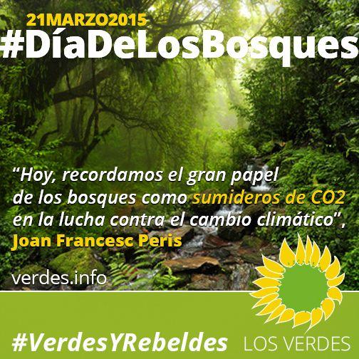 Por una nueva Ley Forestal Valenciana. No a la Ley de Montes del PP