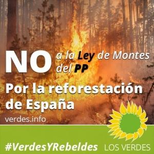 No a la Ley de Montes del PP. Por la reforestación de España