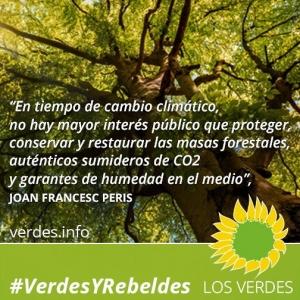 Es urgente una nueva política forestal: el caso valenciano