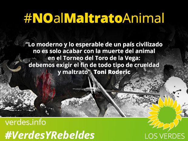 Toro de la Vega: Los Verdes exigen el fin del maltrato animal más allá de la prohibición de su muerte pública