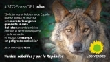 Los Verdes piden el cese de la caza del lobo y la declaración de especie en peligro de extinción